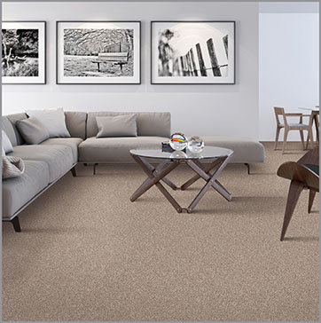 SmartStrand Carpet